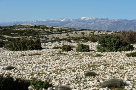 Velebit mountain range and the rocky pastures of Pag